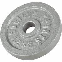 Valurautainen levypaino 2,5kg